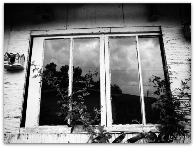 window00