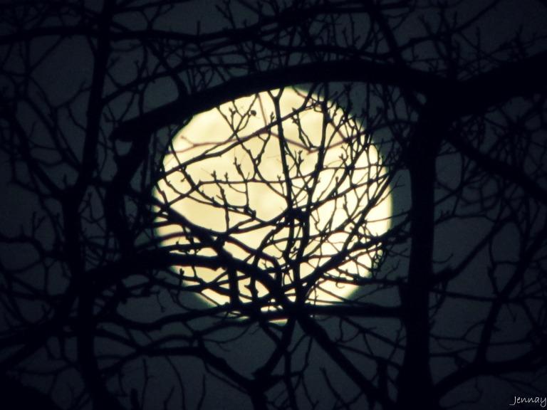 moon12-28-12-2