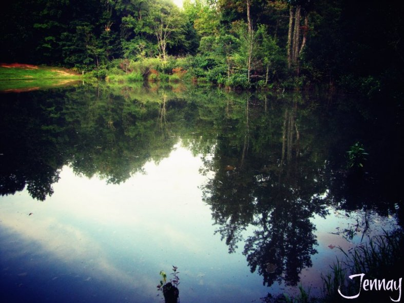 reflections03
