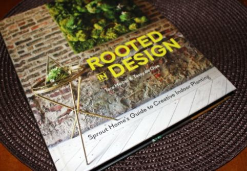Rooted In Design 00