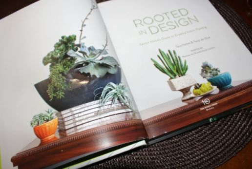 Rooted In Design 01
